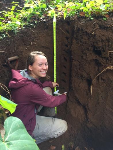Casey soil pit