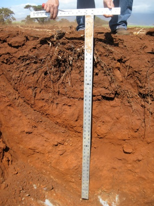 photo_soil pit with scale